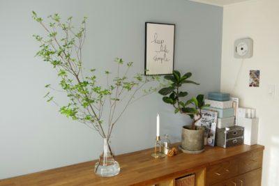 【ドウダンツツジのあるインテリア】ホルムガード「フローラ」で簡単に枝物を楽しむ